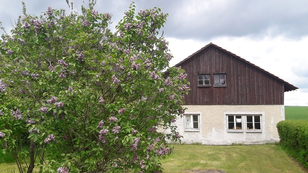 Botanical Dye Weekend at Hand Herz Seele